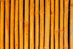 Seamless yellow bamboo stick striped pattern Royalty Free Stock Photos