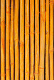 Seamless yellow bamboo stick striped pattern Stock Photography