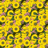 Seamless yellow floral texture Stock Image