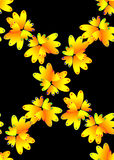 Seamless yellow flowers Stock Images