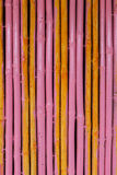 Seamless yellow pink bamboo stick striped pattern Royalty Free Stock Photo