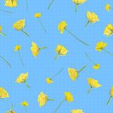 Seamless yellow roses. Repeatable background of flying yellow roses, photographed at studio light, and soft dots, isolated on blue Royalty Free Stock Photos