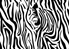Seamless zebra skin pattern. Wallpaper with black stripes on white background. Zebra stripes hunting camouflage. Vector. Illustration. eps10 vector illustration