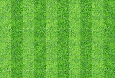 Seamlessly green grasses texture background. Royalty Free Stock Images