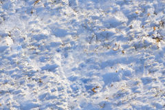 Seamlessly tileable snow texture. Snow texture, edited to be tileable both horizontally and vertically. Some dormant plant life is visible. Taken in Beauharnois Royalty Free Stock Images