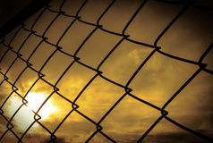 Seamlessly tillable chain link fence with park Royalty Free Stock Photography