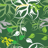 Seamples  Spring Flower illustration Royalty Free Stock Image
