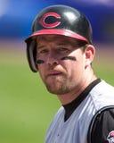 Sean Casey Cincinnati Reds Fotografia Stock