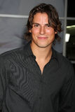 Sean Faris Royalty Free Stock Photography