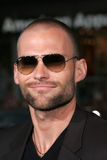 Seann William Scott Royalty Free Stock Photo
