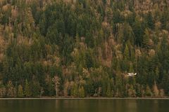 A seaplane flying low above a lake royalty free stock photography