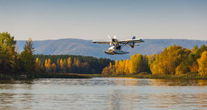 Seaplane flying over the bay Royalty Free Stock Image