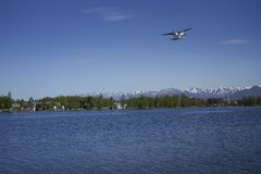 Seaplane flying over lake Stock Photos