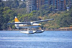 Seaplane landing. In Victoria harbour Royalty Free Stock Photos