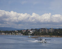 Seaplane Lands on the Water in Victoria, British Columbia Royalty Free Stock Image