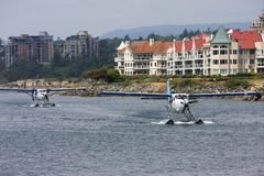 Seaplanes taxiing Stock Image
