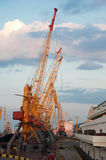 Seaport And Tower Cranes Stock Images