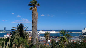 Seaport landscape with palm trees Stock Image