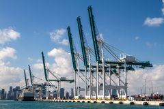 Seaport of Miami Royalty Free Stock Image