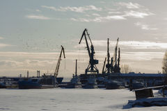 Seaport at sunny winter day - cargo cranes in ice harbor, silhouette Stock Photo