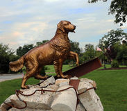 Search And Rescue Dog Statue Royalty Free Stock Photography