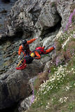 Search and Rescue Exercise Royalty Free Stock Image