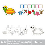 Search the word. Find hidden word Turtle Stock Images