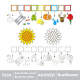 Search the word Sunflower Stock Image