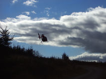 Searching. Rescue helicopter  searching a pine forest at dusk Stock Image