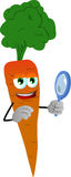 Searching carrot with magnifying glass Royalty Free Stock Photography