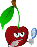Searching cherry with magnifying glass Royalty Free Stock Photos