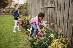 Searching for Chocolate Easter Eggs. Two little girls searching for chocolate easter eggs in a back garden. They are looking in the flower bed, next to the royalty free stock photography