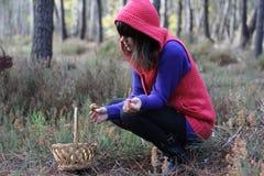 Searching mushrooms Royalty Free Stock Image