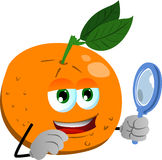 Searching orange with magnifying glass Royalty Free Stock Photos