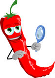 Searching red hot chili pepper with magnifying glass Royalty Free Stock Photography