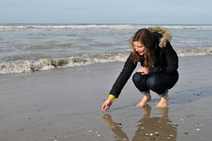 Searching for shells. Young woman searching shells on the beach stock photography