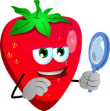 Searching strawberry with magnifying glass Royalty Free Stock Photo