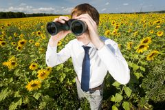 Searching for success royalty free stock image