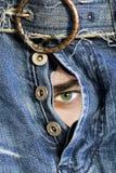 Searchs dell'occhio verde Fotografie Stock Libere da Diritti