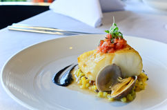 Seared Atlantic Cod royalty free stock images