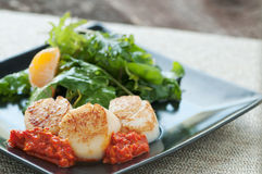Seared Scallop Appetizer Stock Photo