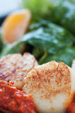 Seared Scallop Appetizer Stock Photos