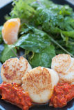 Seared Scallop Appetizer Stock Image