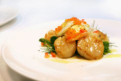 Seared scallop entree. Entree of seared scallops with quail eggs and salmon roe served on a white plate Stock Photos