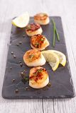 Seared scallop Royalty Free Stock Photography