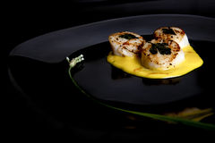 Seared Scallops on Black Plate Royalty Free Stock Images