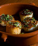 Seared scallops with chives Royalty Free Stock Photos