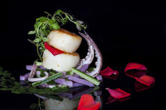 Seared scallops Royalty Free Stock Images