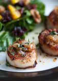 Seared Scallops Royalty Free Stock Photography