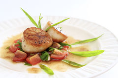 Seared scallops salsa. Seared scallops with tomato salsa and brown butter sauce royalty free stock photos